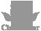 Logo Footer | Classic Lar